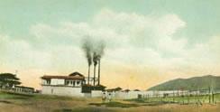"""Planta y oficinas de la empresa de carnes congeladas, """"Venezolana Meat Export Co."""", en Puerto Cabello"""